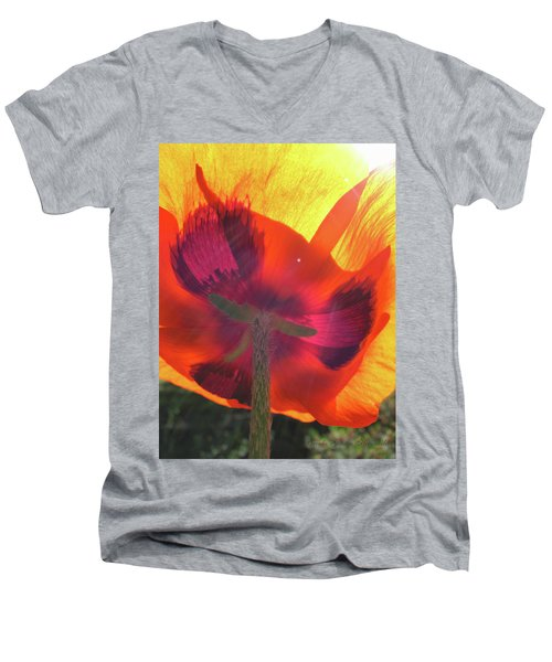 Poppies Gone Wild 3 - Poppy Glow Men's V-Neck T-Shirt