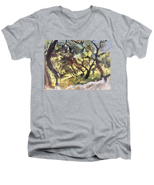 Popping Sunlight Through The Olive Grove Men's V-Neck T-Shirt