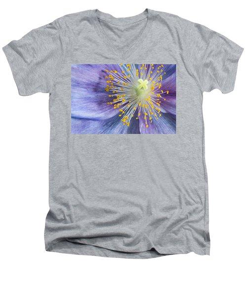 Poppy Fireworks Men's V-Neck T-Shirt