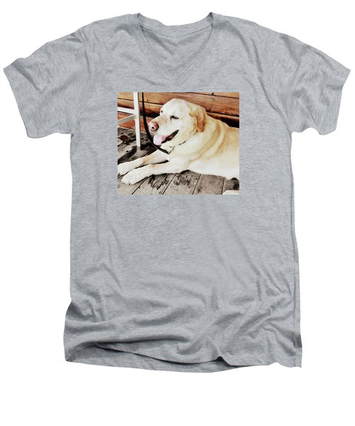 Porch Pooch Men's V-Neck T-Shirt by JAMART Photography