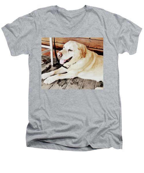 Porch Pooch Men's V-Neck T-Shirt