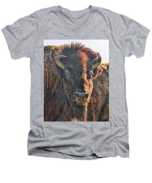 Portrait Of A Buffalo Men's V-Neck T-Shirt by Nancy Landry