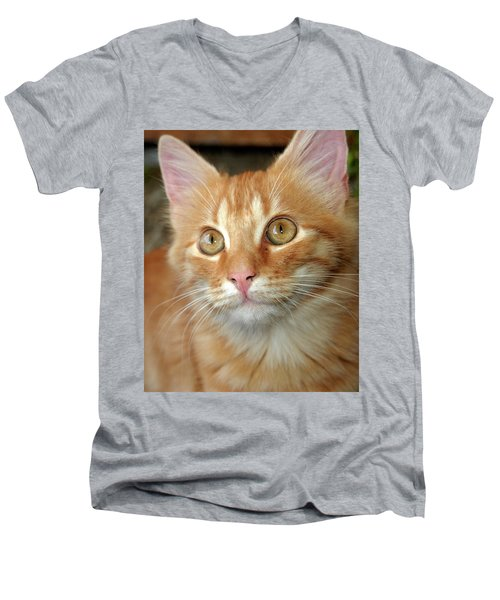 Portrait Of A Cat Men's V-Neck T-Shirt
