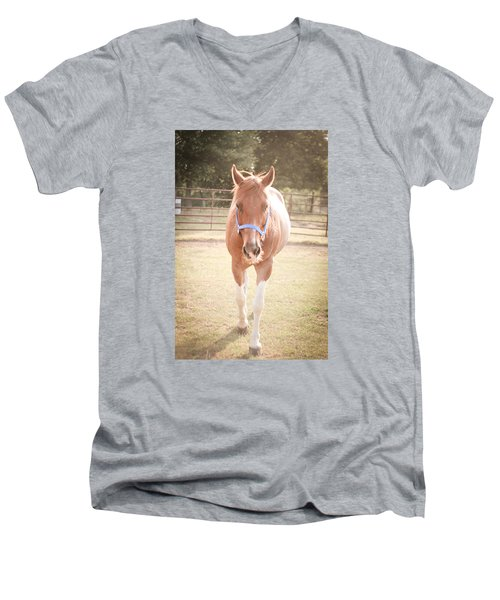 Portrait Of A Light Brown Horse In A Pasture Men's V-Neck T-Shirt by Kelly Hazel