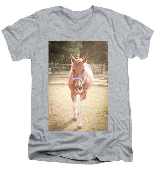 Portrait Of A Light Brown Horse In A Pasture Men's V-Neck T-Shirt