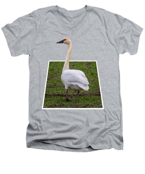 Portrait Of A Swan Out Of Frame Men's V-Neck T-Shirt
