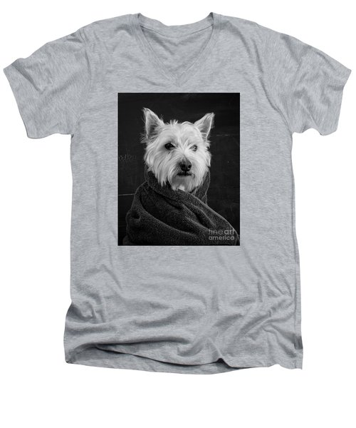 Men's V-Neck T-Shirt featuring the photograph Portrait Of A Westie Dog 8x10 Ratio by Edward Fielding