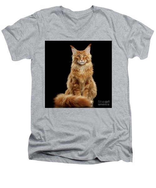 Portrait Of Ginger Maine Coon Cat Isolated On Black Background Men's V-Neck T-Shirt