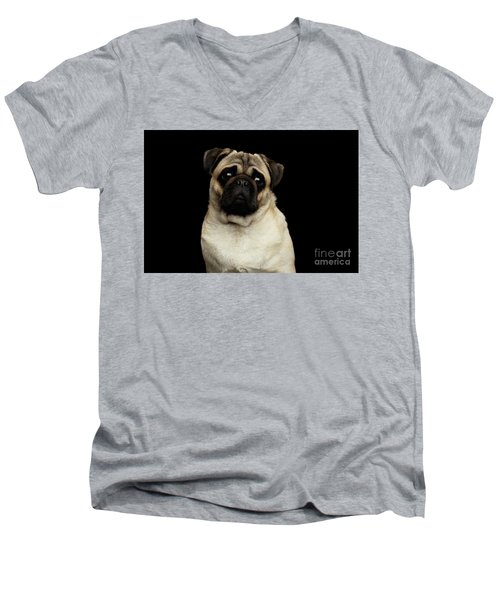 Portrait Of Pug Men's V-Neck T-Shirt by Sergey Taran