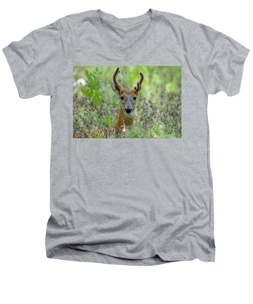 Portriat Of Male Deer Men's V-Neck T-Shirt