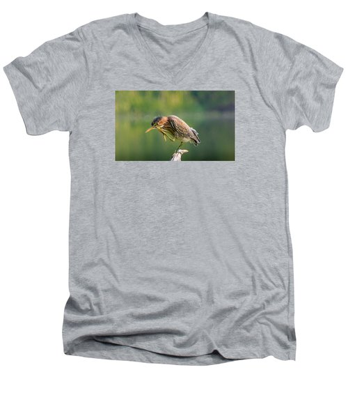 Men's V-Neck T-Shirt featuring the photograph Posing Heron by Jerry Cahill