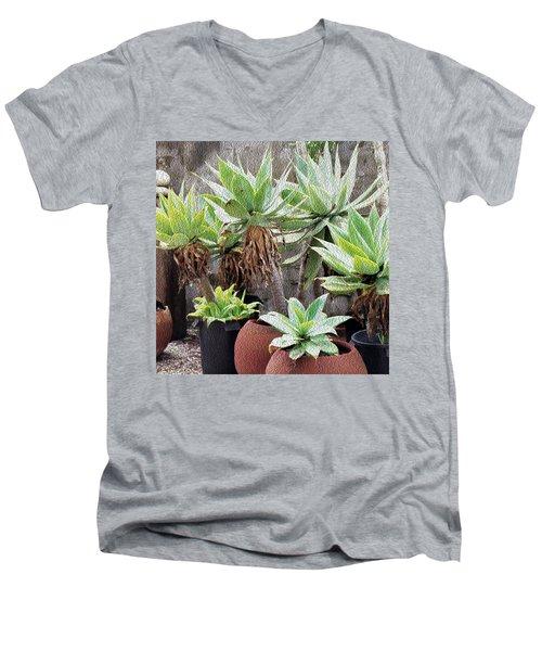 Potted Agave Plants Men's V-Neck T-Shirt