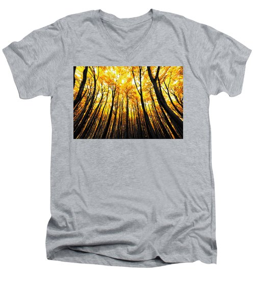 Power Of The Sun Men's V-Neck T-Shirt