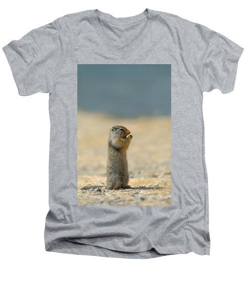 Prairie Dog Men's V-Neck T-Shirt