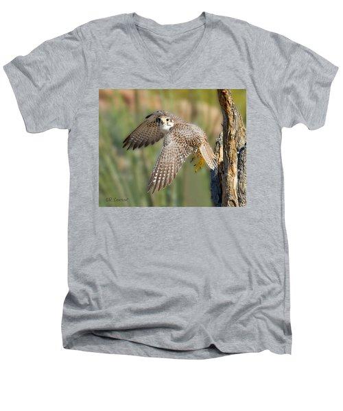 Prairie Falcon Taking Flight Men's V-Neck T-Shirt by CR  Courson