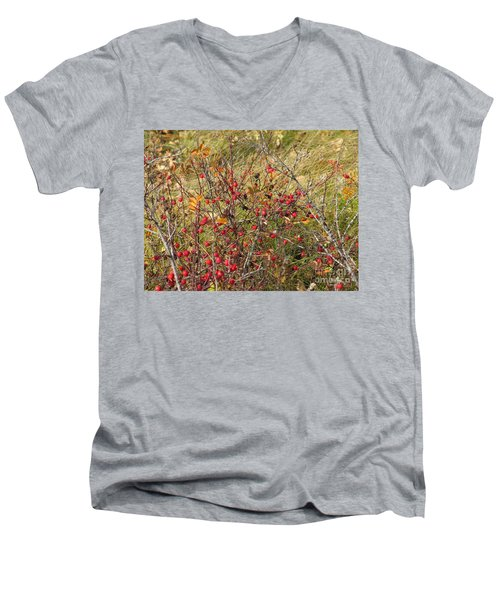 Prairie Rosehips Men's V-Neck T-Shirt