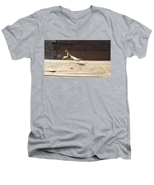 Praying Mantis  Men's V-Neck T-Shirt
