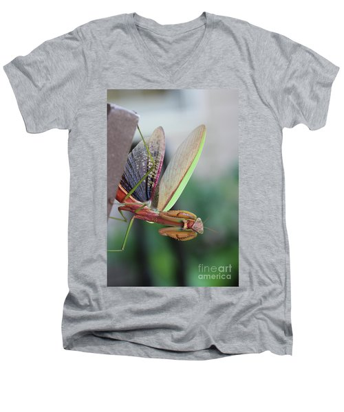 Men's V-Neck T-Shirt featuring the photograph Praying Mantis by Stacey Zimmerman
