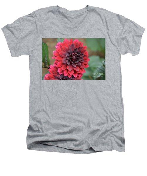 Pretty Blooming Red Dahlia Flower Blossom Men's V-Neck T-Shirt