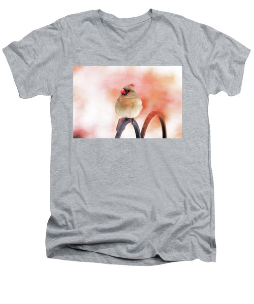 Pretty Cardinal Men's V-Neck T-Shirt