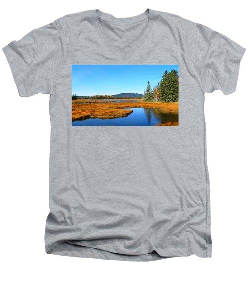 Pretty Marsh Men's V-Neck T-Shirt