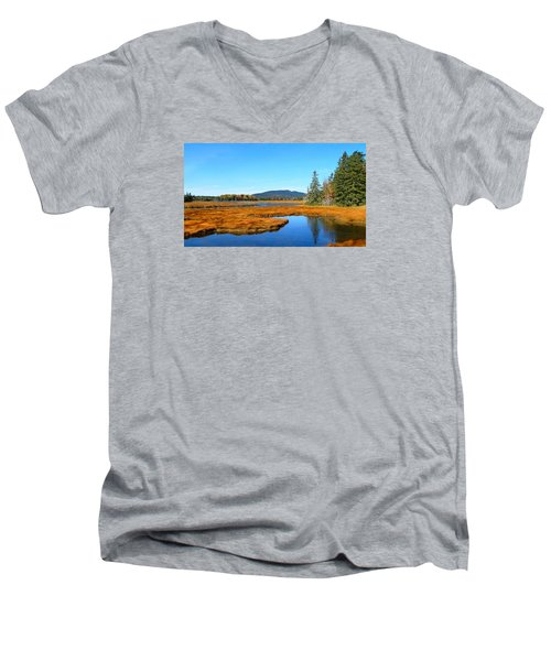 Pretty Marsh Men's V-Neck T-Shirt