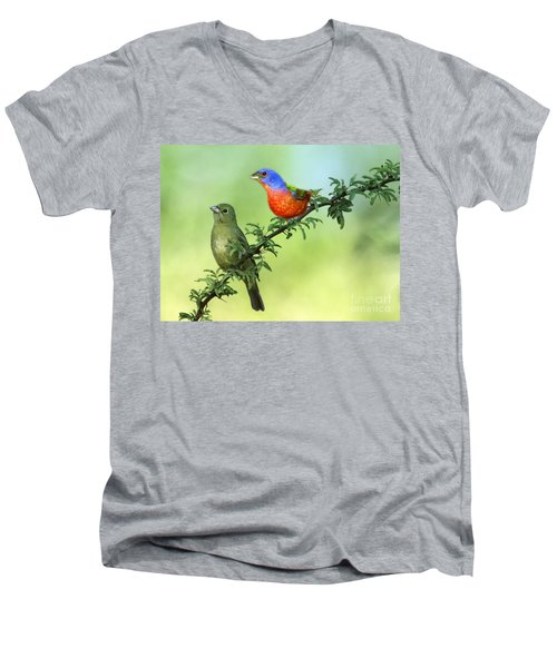 Pretty Painted Buntings Perched Men's V-Neck T-Shirt