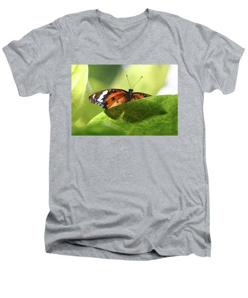 Preview - Men's V-Neck T-Shirt