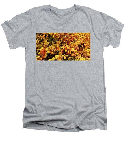 Prickly Moses Men's V-Neck T-Shirt by Cassandra Buckley