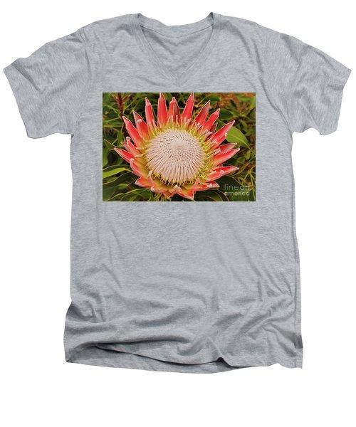 Protea I Men's V-Neck T-Shirt by Cassandra Buckley