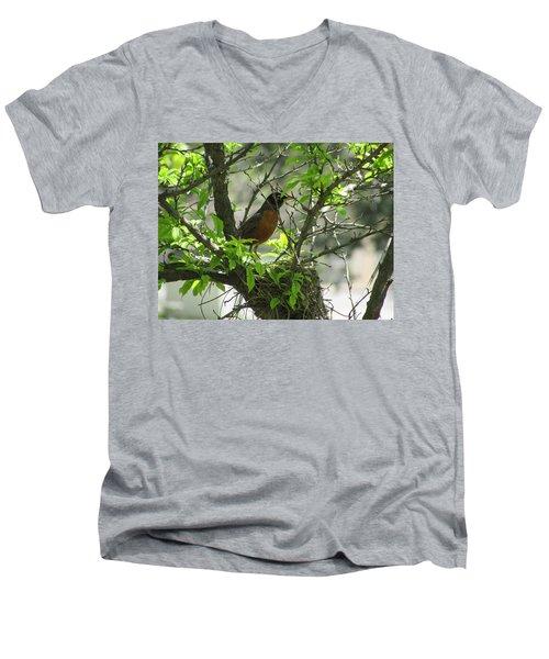 Protecting The Nest Men's V-Neck T-Shirt