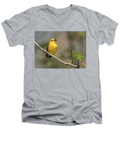 Prothonotary Warbler Singing Men's V-Neck T-Shirt