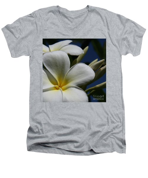 Pua Lena Pua Lei Aloha Tropical Plumeria Maui Hawaii Men's V-Neck T-Shirt