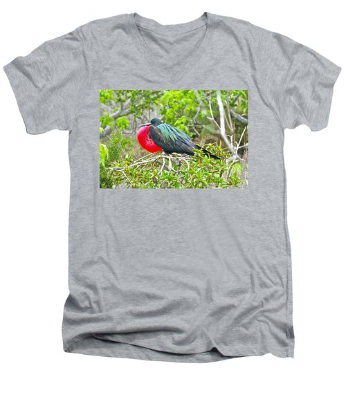 Puffing Up When Courting Men's V-Neck T-Shirt
