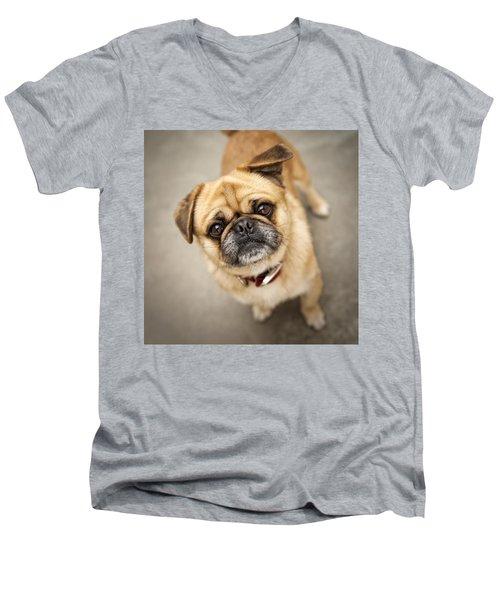 Pug Dog 2 Men's V-Neck T-Shirt