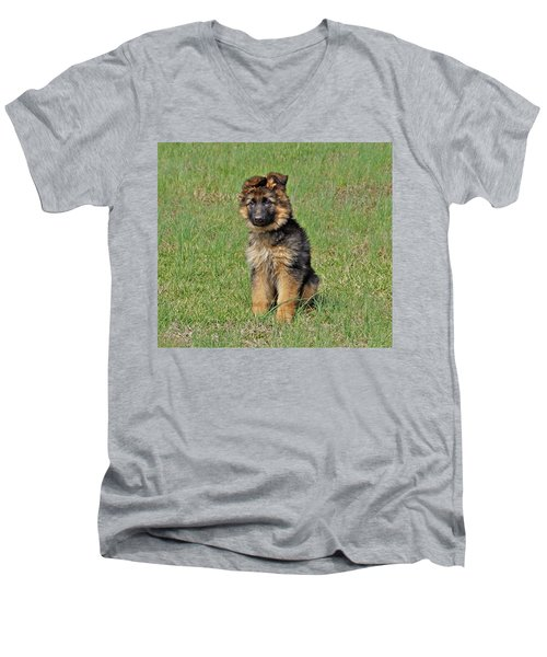 Men's V-Neck T-Shirt featuring the photograph Puppy Halo by Sandy Keeton