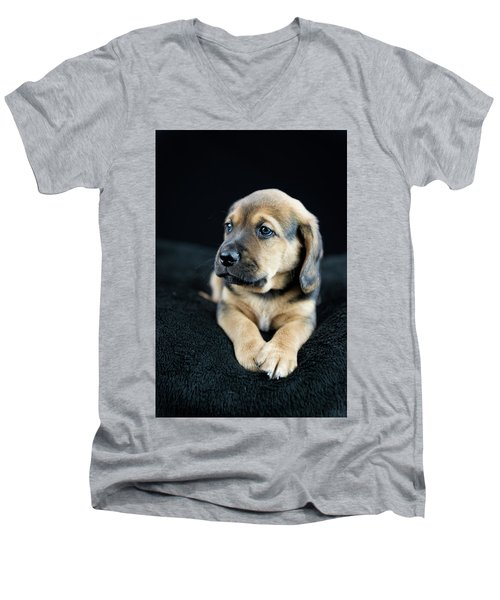 Puppy Portrait Men's V-Neck T-Shirt