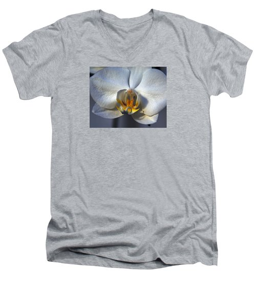 Men's V-Neck T-Shirt featuring the photograph Pure Form And Color by Lynda Lehmann