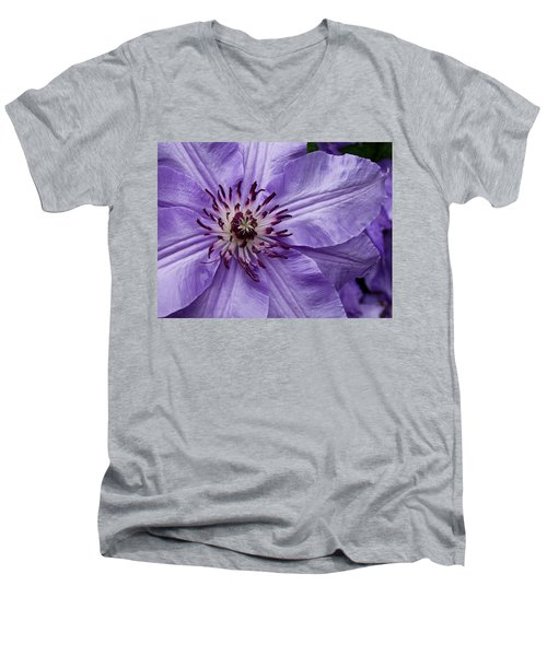 Purple Clematis Blossom Men's V-Neck T-Shirt