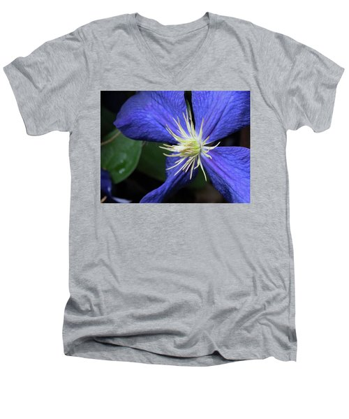 Purple Clematis Men's V-Neck T-Shirt by Rebecca Overton