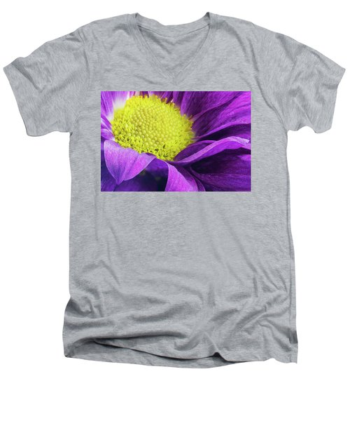 Purple Daisy In The Garden Men's V-Neck T-Shirt