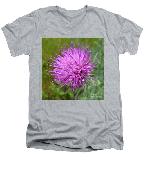 Purple Dandelions 2 Men's V-Neck T-Shirt