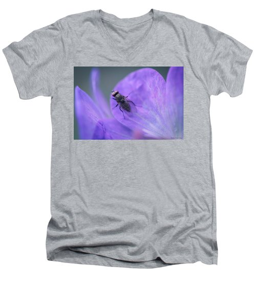 Purple Fly Men's V-Neck T-Shirt