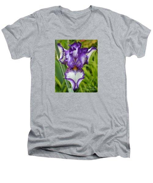 Purple Iris Art Men's V-Neck T-Shirt by Rebecca Margraf