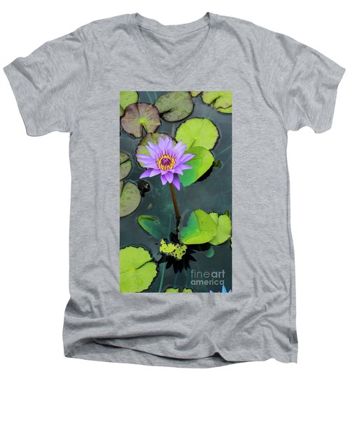 Purple Lilly With Lilly Pads Men's V-Neck T-Shirt