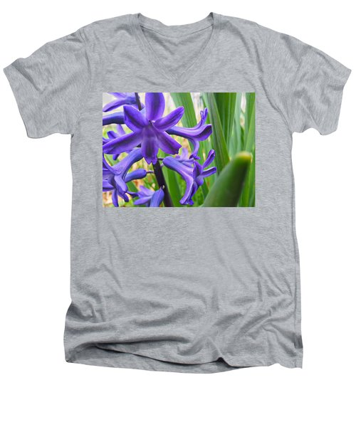 Men's V-Neck T-Shirt featuring the photograph Purple Spring by Robert Knight