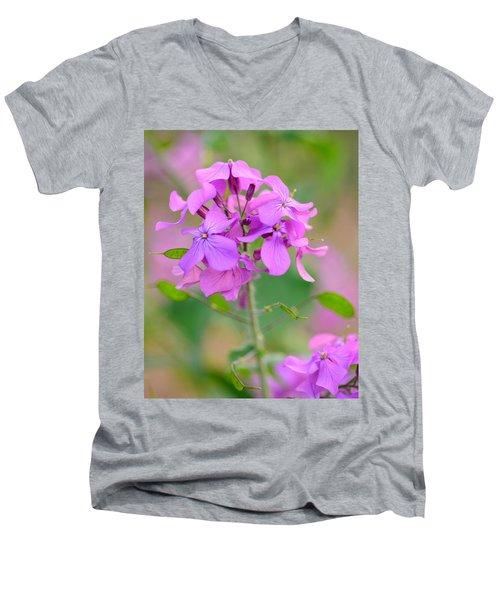 Purple Star Phlox Men's V-Neck T-Shirt