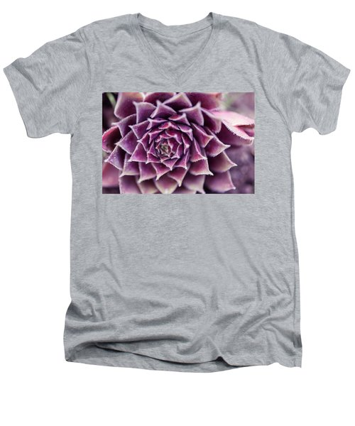 Men's V-Neck T-Shirt featuring the photograph Purple Succulent Plant Blossom In Summer by Jingjits Photography
