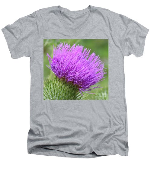 Purple Thistle Men's V-Neck T-Shirt