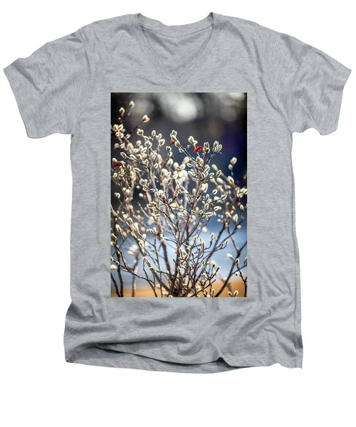 Pussy Willow Men's V-Neck T-Shirt by Robert Clifford